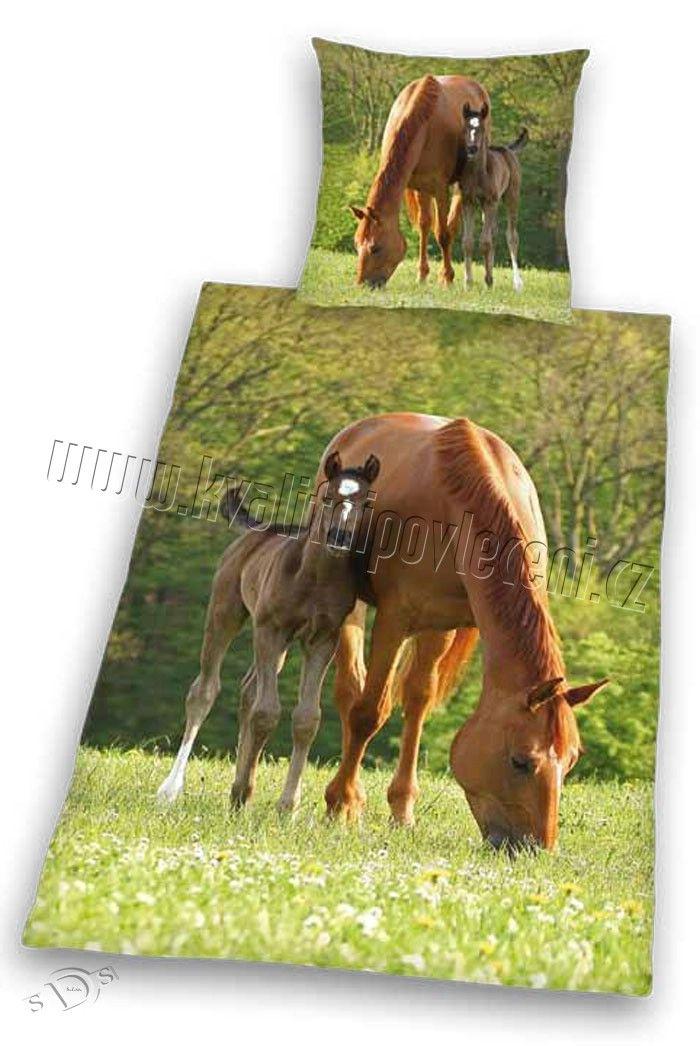 Bavlněné povlečení Koně na pastvě 1x 140/200, 1x 90/70