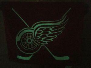 forforeskující vrstva NHL Detroit Red Wings