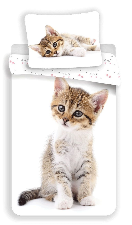 Bavlněné povlečení Kitten white s motivem roztomilého kotátka, Jerry Fabrics
