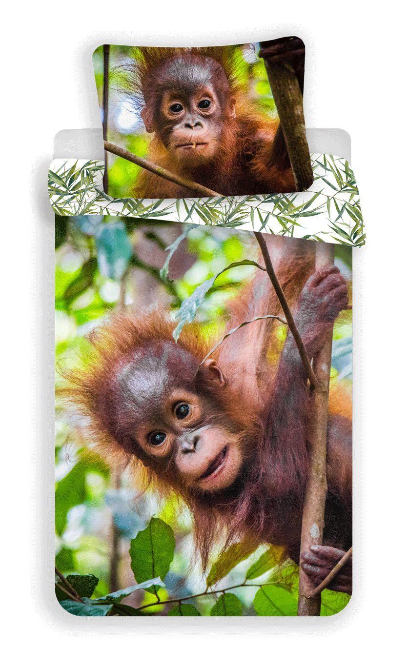 Povlečení fototisk Orangutan 02 Jerry Fabrics