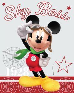 Dětská fleecová deka - Mickey